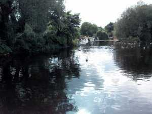 The park of St Stephen's Green, Dublin, Ireland-pic-7